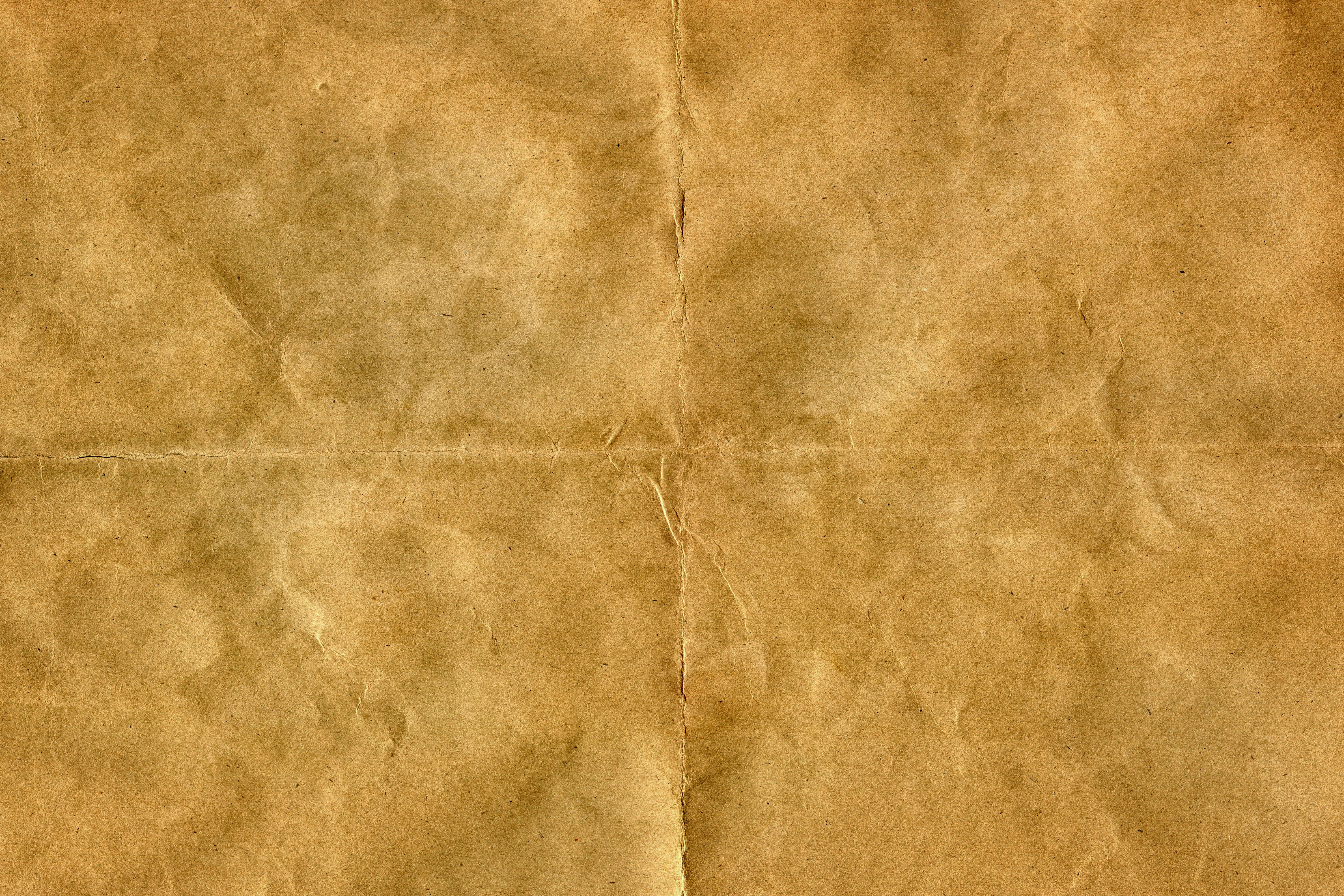 on display pagelines 5 wrinkled parchment paper jpg